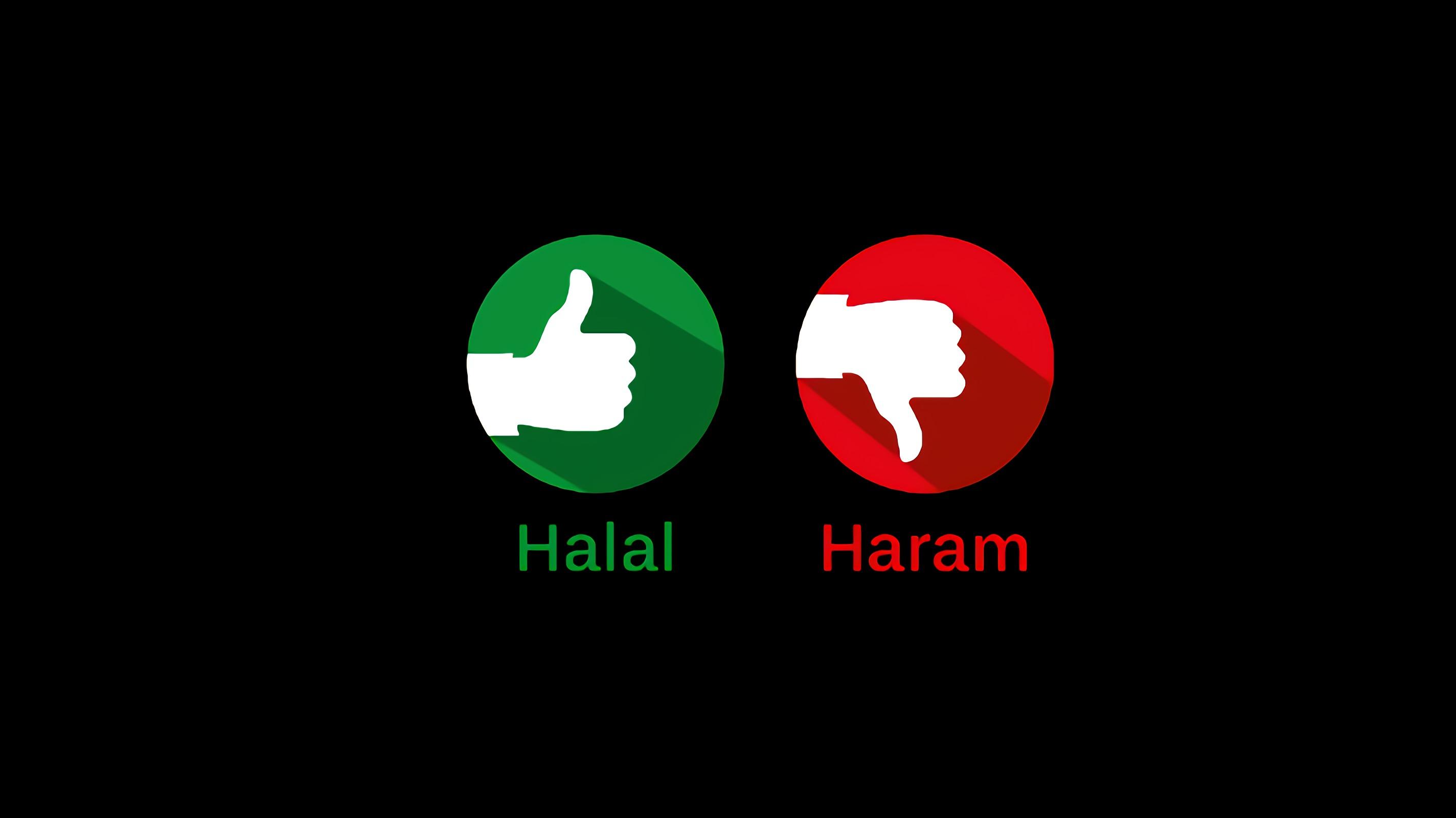 Sesuatu yang Halal Tidak Membutuhkan yang Haram. Apa Maksudnya?